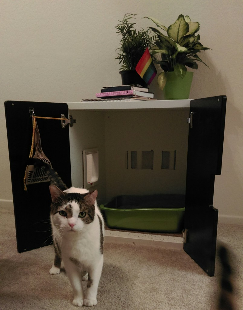 DIY hidden litter box
