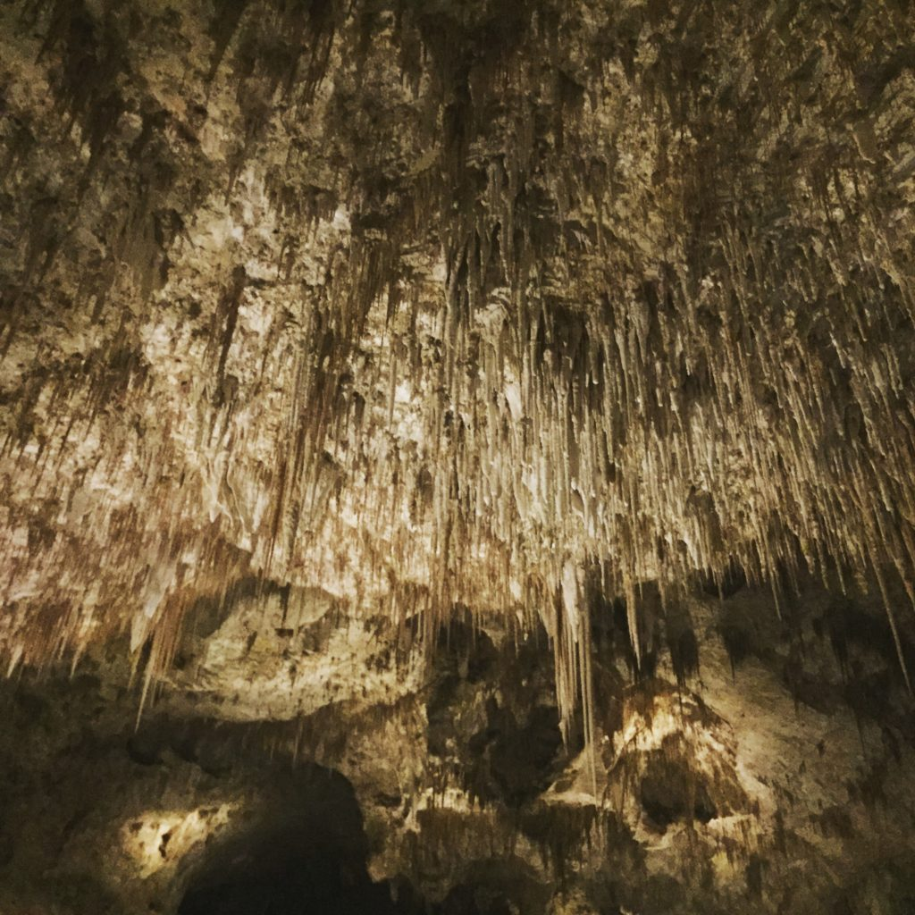 southeast new mexico travel guide Carlsbad Caverns National Park caves